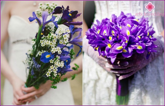 Variants of a wedding attribute with irises