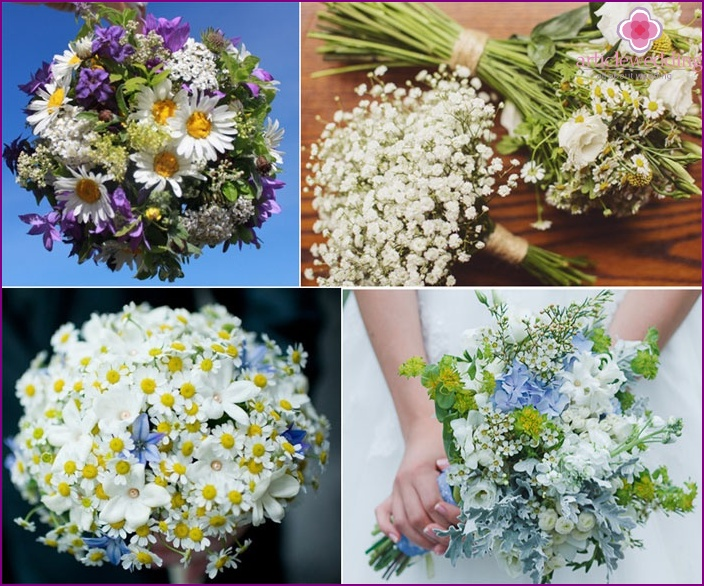 Inexpensive and beautiful compositions of wild flowers
