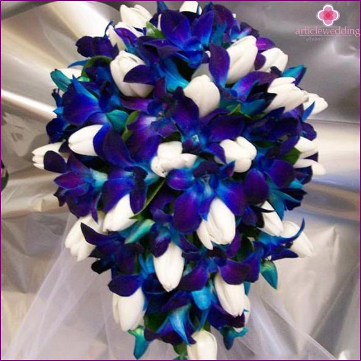 Una bella combinazione di bianco e blu