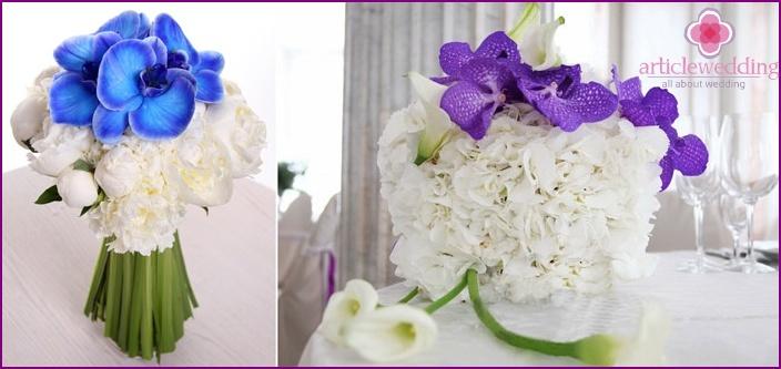 Original design composition with a blue orchid