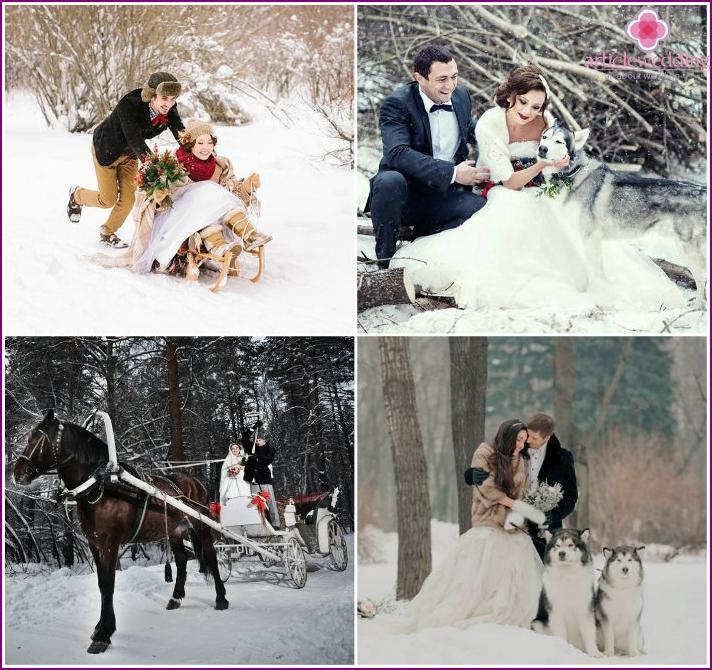 Wedding photos in a snowy forest