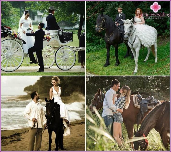 Wedding photos of newlyweds with horses