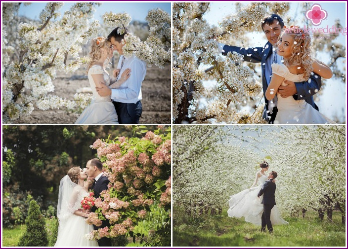 Wedding photo session in a flowering garden
