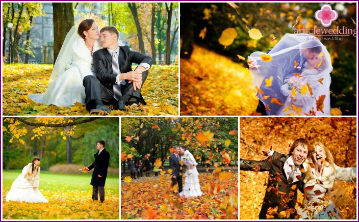 Wedding photography in autumn leaves