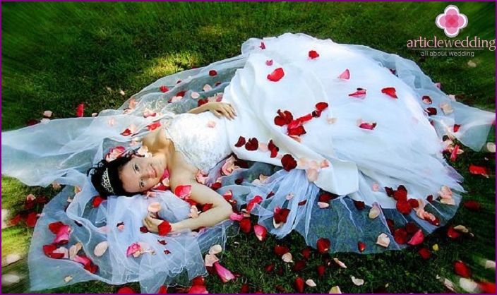 Decor of a wedding photo shoot with rose petals