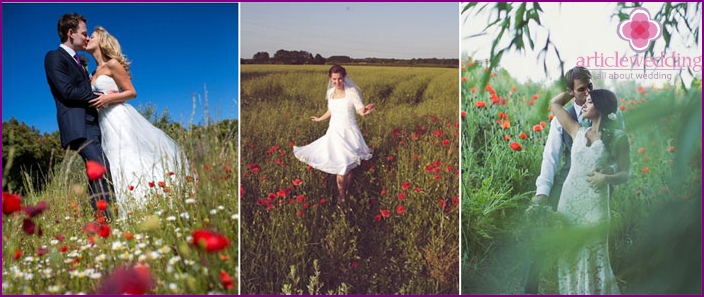 Wedding photo in poppy field