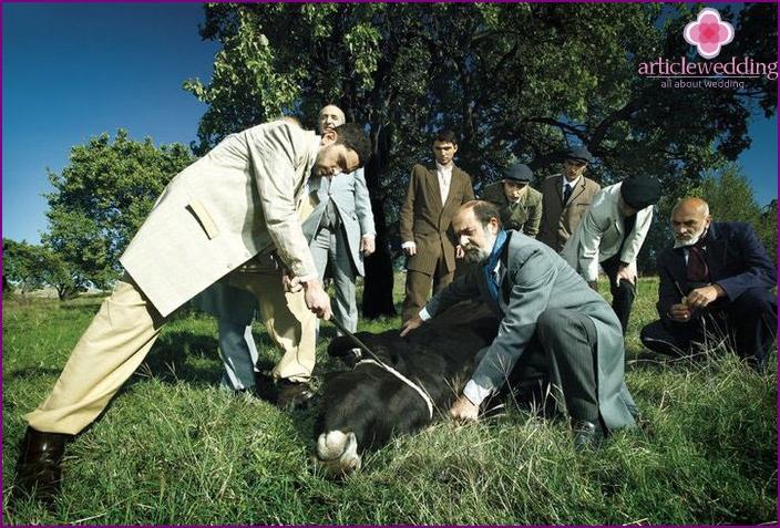 Wedding bull stabbed