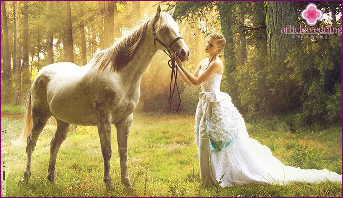 The horse will turn the shooting into a real fairy tale
