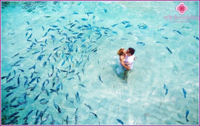Honeymoon to the Maldives