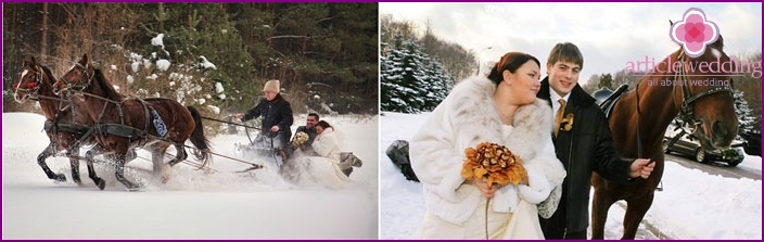 Getting married in winter: a sleigh ride