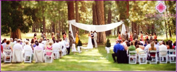 Forest wedding: registration of marriage