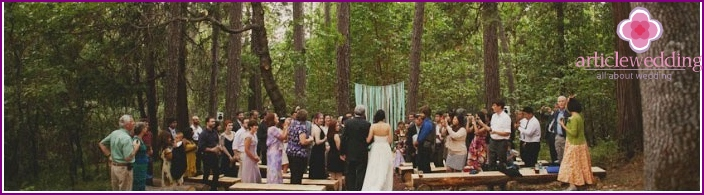 Wedding in the foggy forest