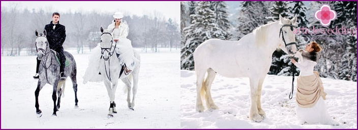 Nuorten hevosurheilijoiden kävelymatka - mahtava laukaus