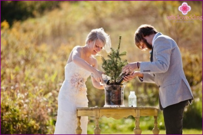 The tradition of planting a tree by newlyweds in Switzerland