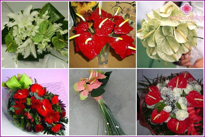 Wedding gift bouquet: compositions with anthuriums