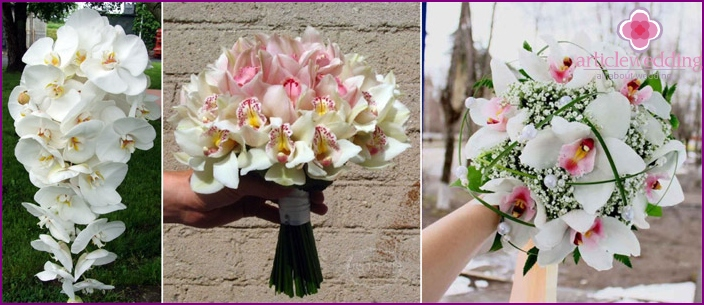 A bouquet of orchids for a wedding