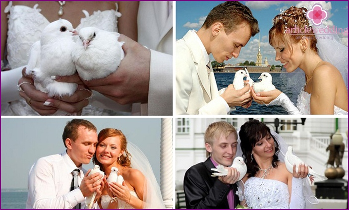 Newlyweds are holding pigeons