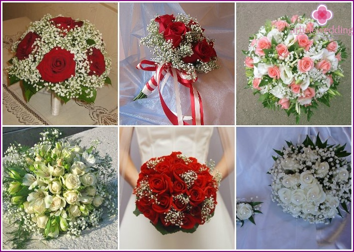 The combination of gypsophila with roses