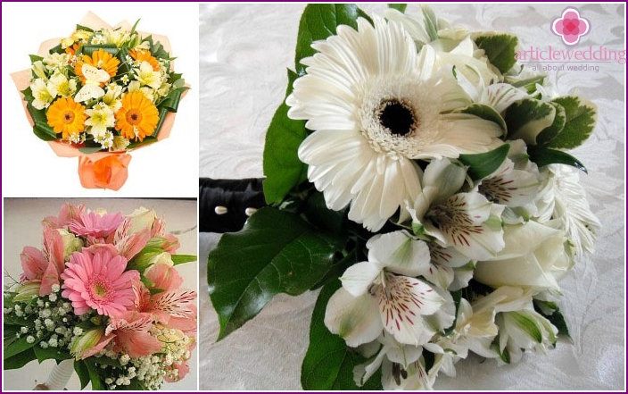 Harmonious accessory with gerberas