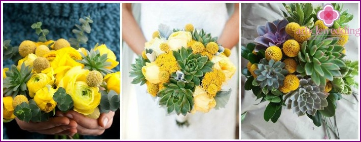 Floral accessory for the bride from craspedia and succulent