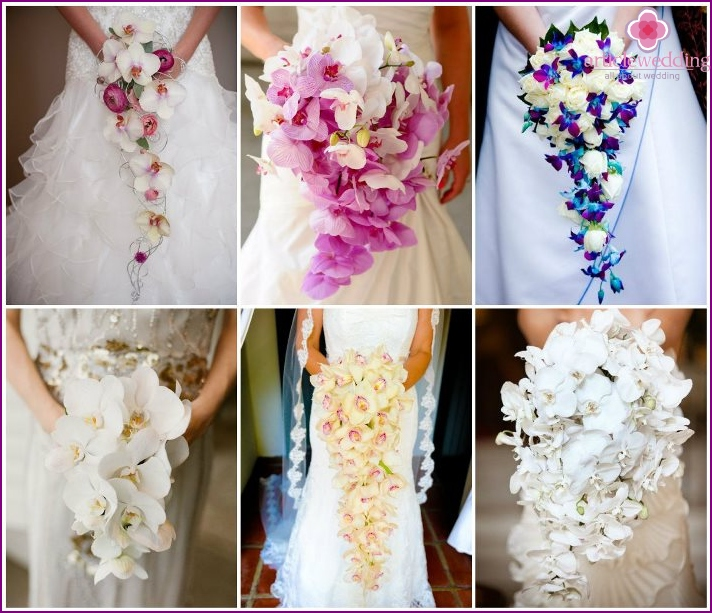 Bridal cascade with orchids for the bride and groom