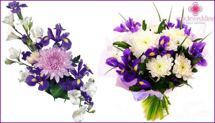 Schöne Kombinationen von Chrysanthemen mit Iris