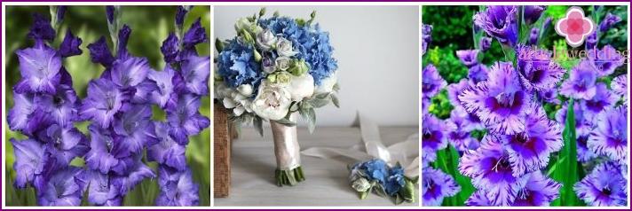 Violet gladioli in a bridal bouquet