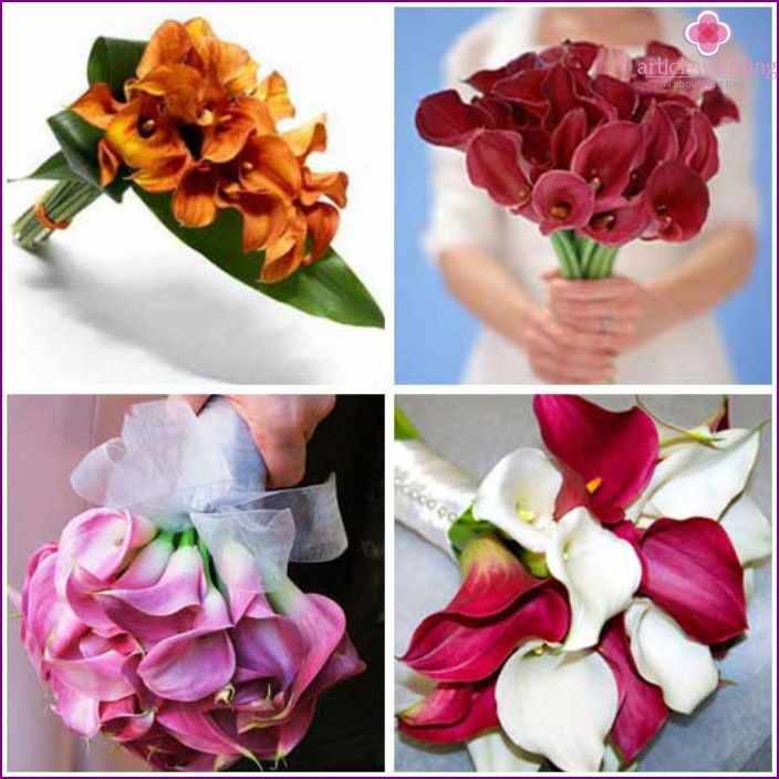 Wedding Bouquet: multi-colored calla lilies