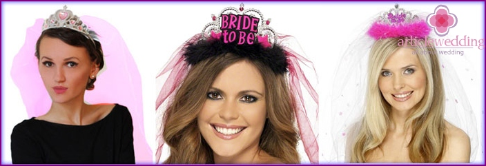 Veil with a crown for a bachelorette party